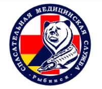 Спасательная медицинская служба г.Рыбинска